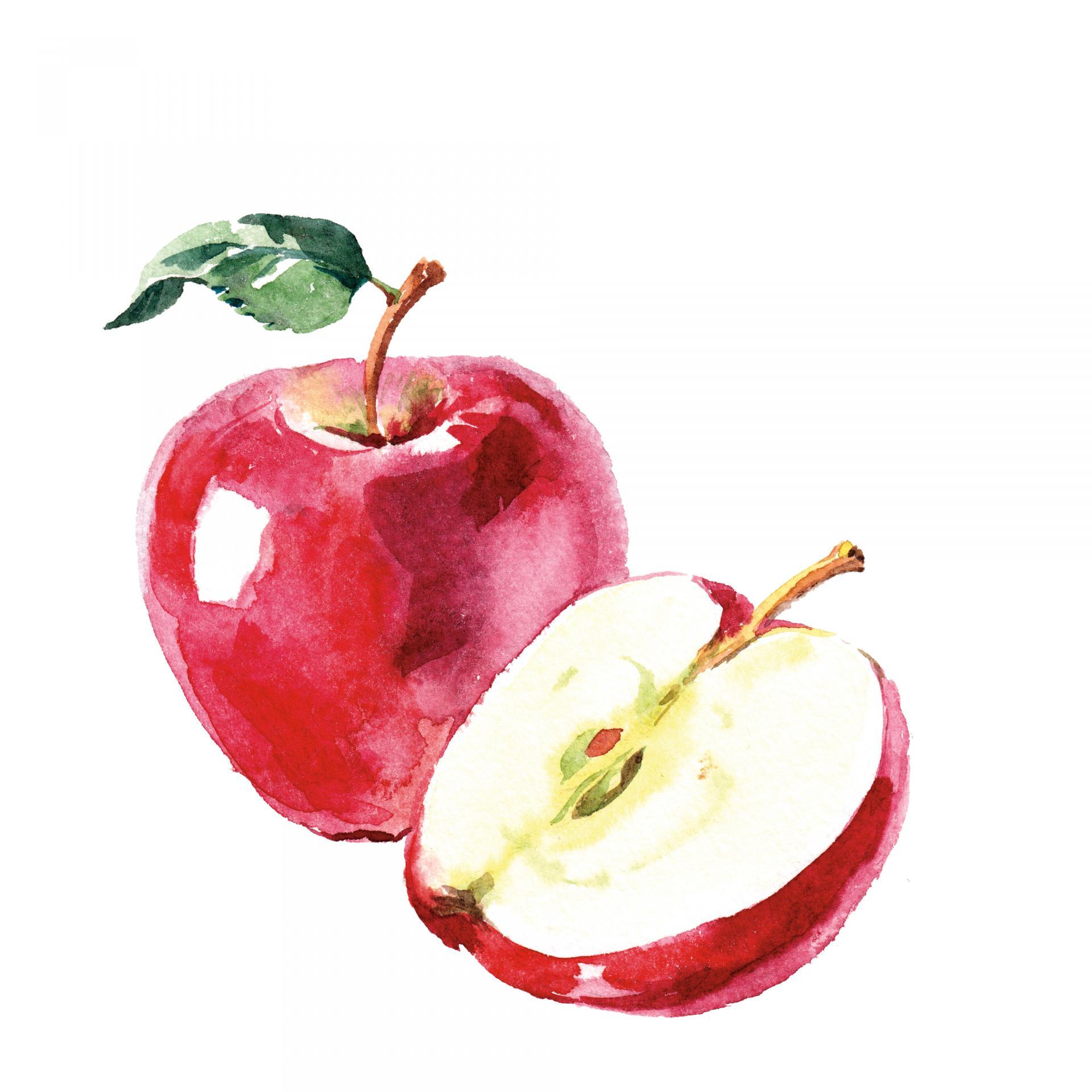 Illustration: Pim/Shutterstock.com