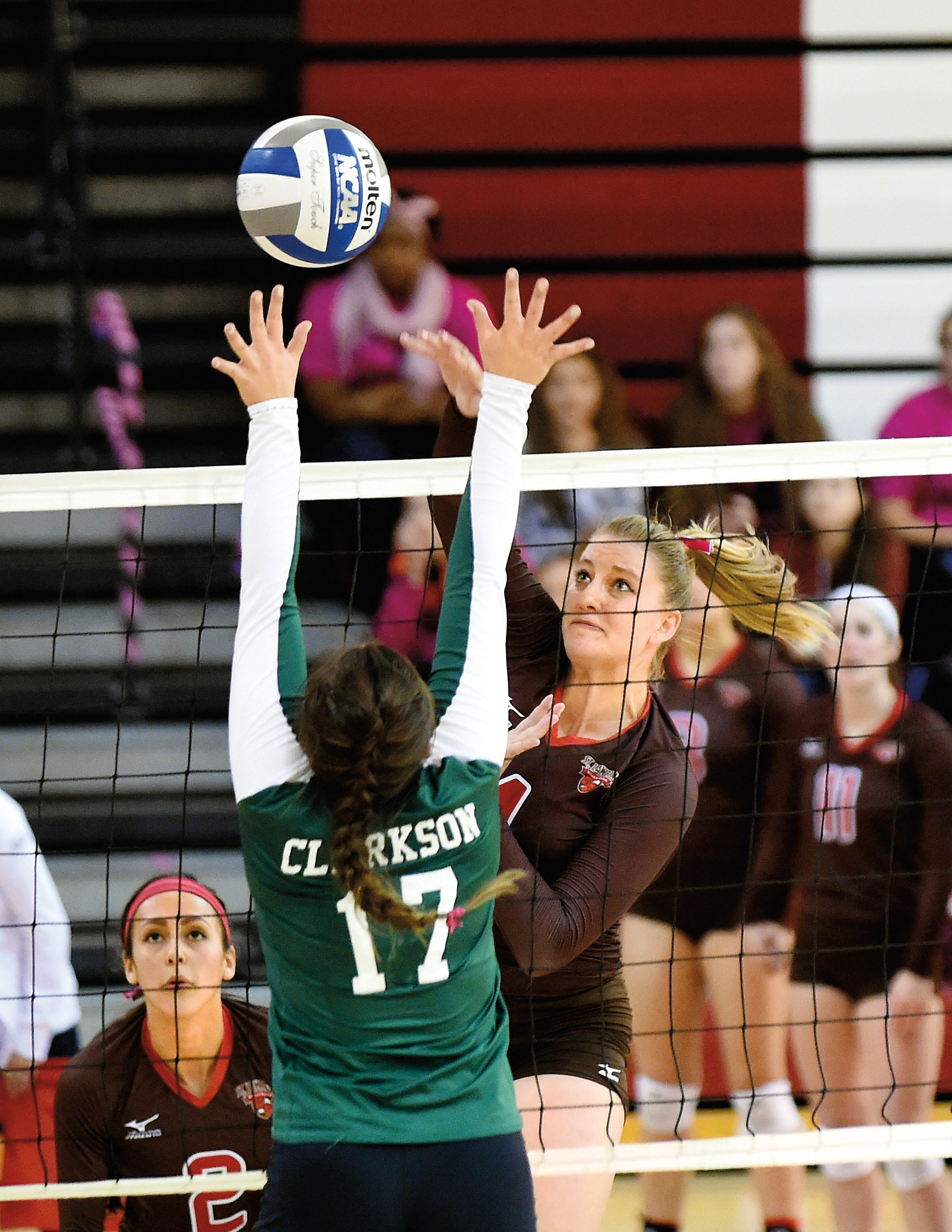Whether she's powering volleyballs over the net in Burkman Gym or studying bats in Central America to learn more about disease transmission, Lexi Brown '16 is a St. Lawrence standout. (Photo courtesy Lexi Brown)