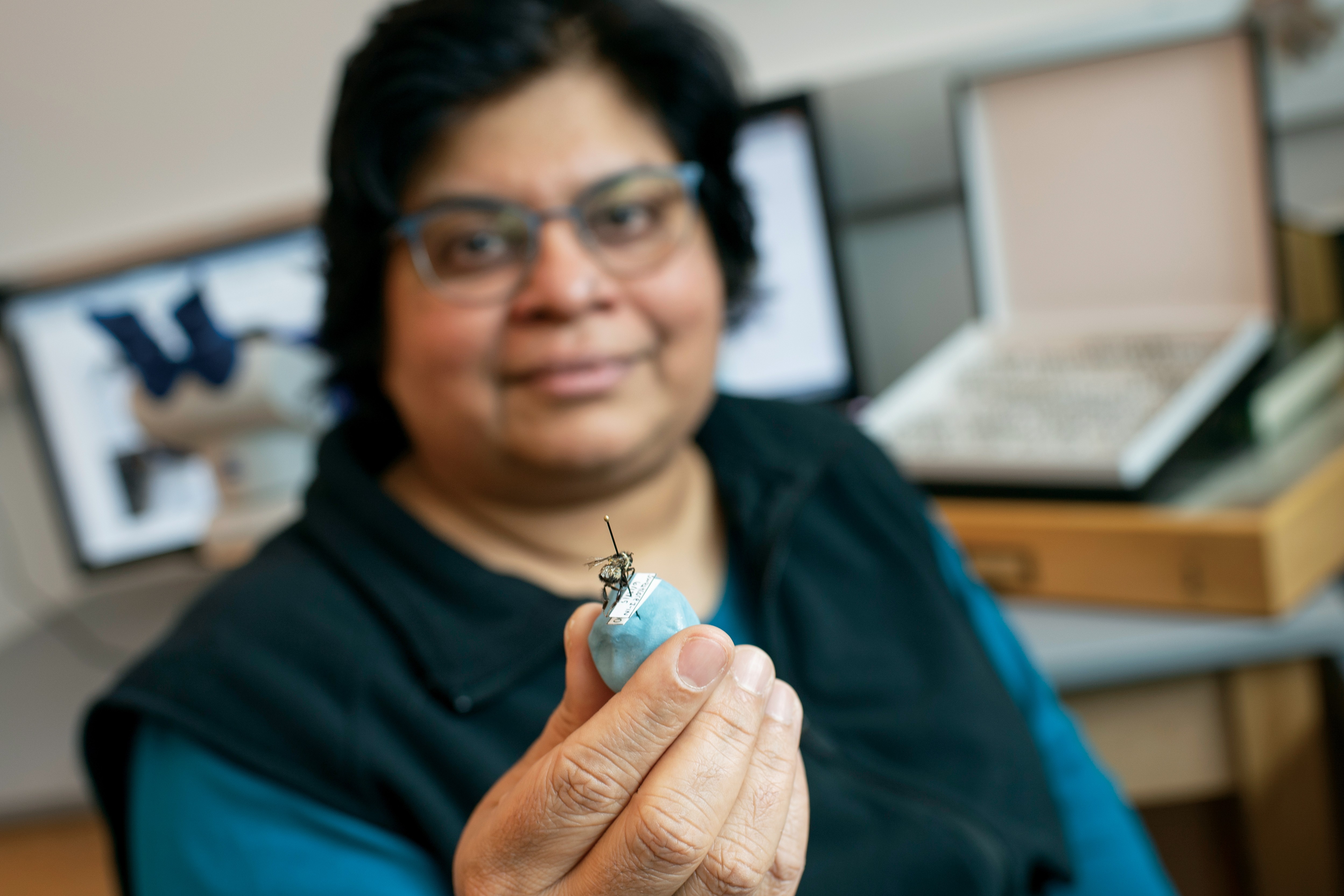 Aswini Pai, associate professor and co-chair of biology at St. Lawrence