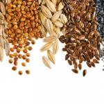 A Partnership Exploring Indigenous Foods
