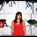 The Intersection of Insect Art, Science and Advocacy