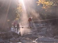 Students crossing a bridge over a stream with sun filtering through the trees.