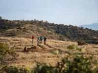 Four people riding bikes across the open hillsides